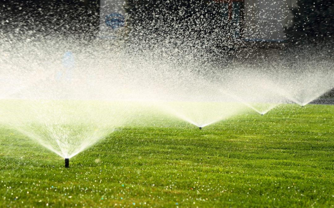 Impianti di irrigazione: posa e manutenzione